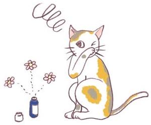なぜ猫に精油はNGなのか?